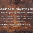 Ireland and the Polish Question 1916-1918